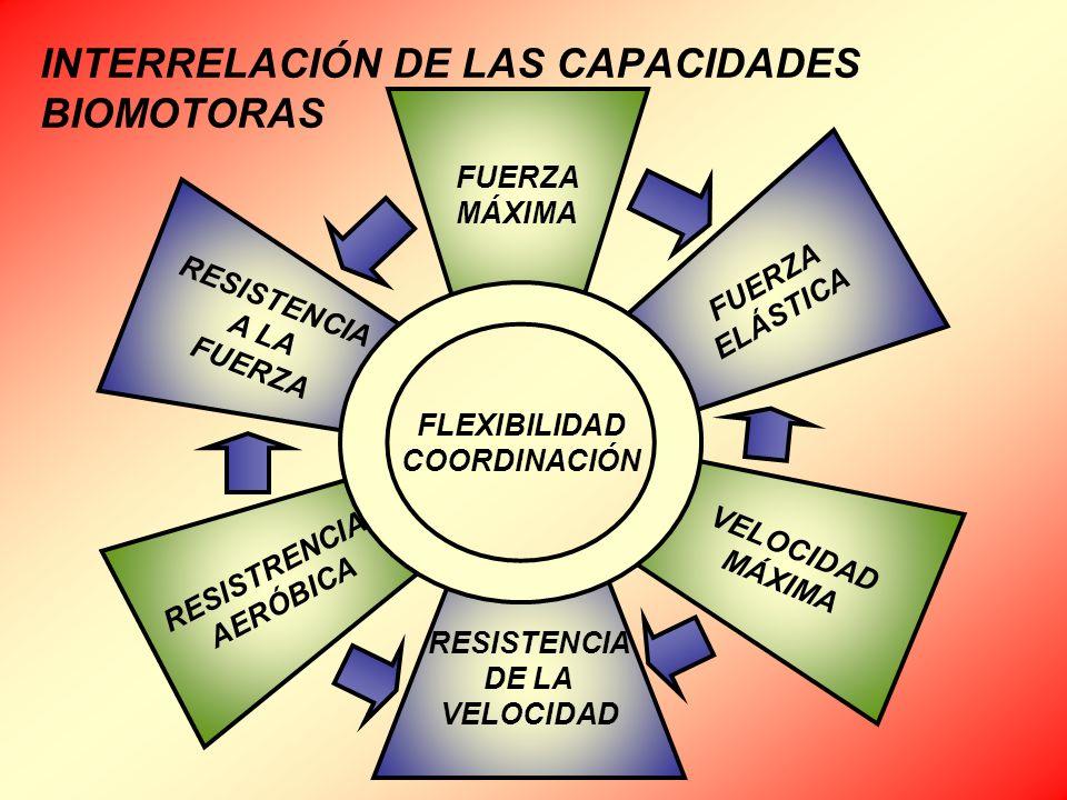 INTERRELACIÓN DE LAS CAPACIDADES BIOMOTORAS