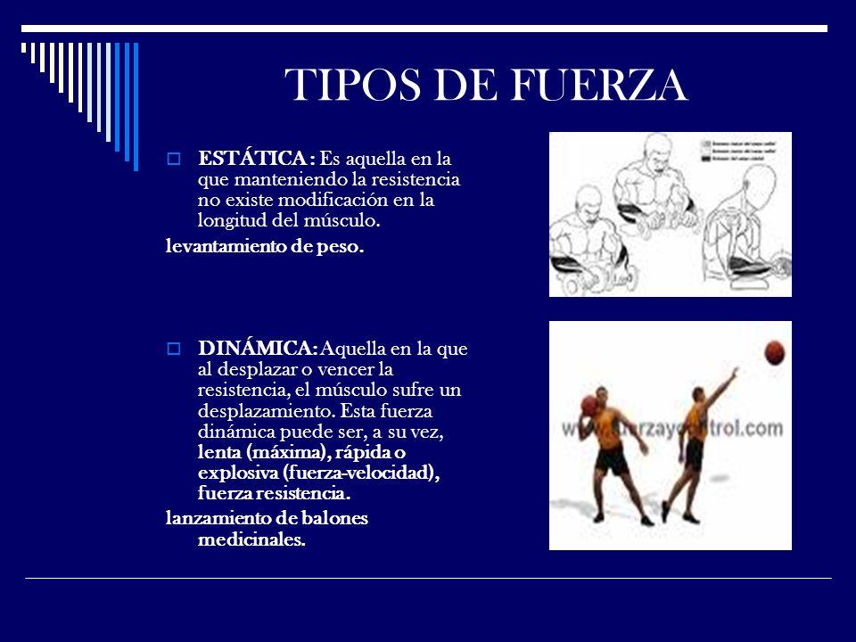 TIPOS DE FUERZA ESTÁTICA : Es aquella en la que manteniendo la resistencia no existe modificación en la longitud del músculo.