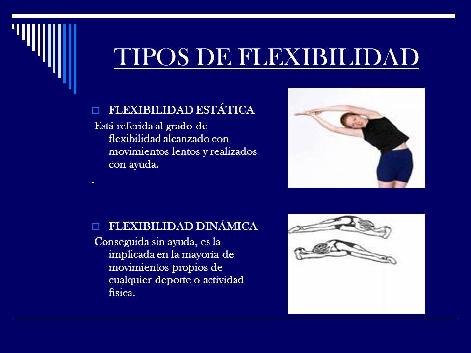 TIPOS DE FLEXIBILIDAD FLEXIBILIDAD ESTÁTICA