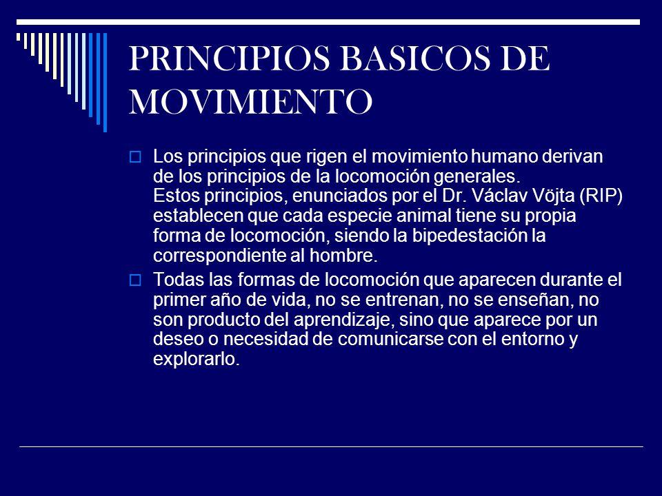PRINCIPIOS BASICOS DE MOVIMIENTO