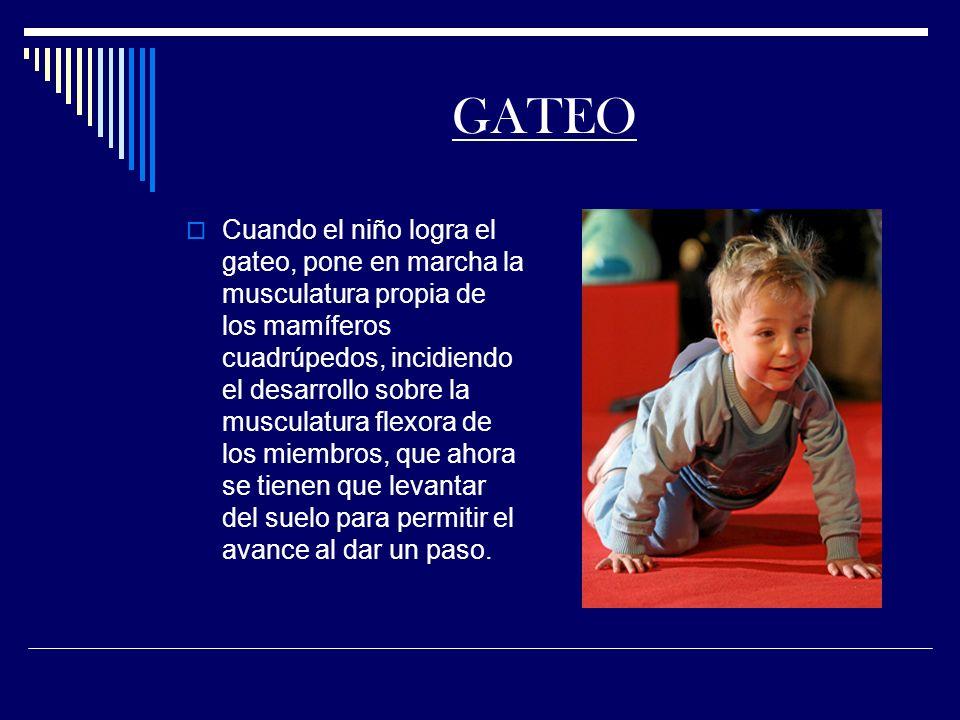GATEO