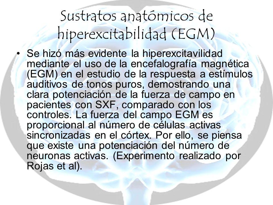 Sustratos anatómicos de hiperexcitabilidad (EGM)