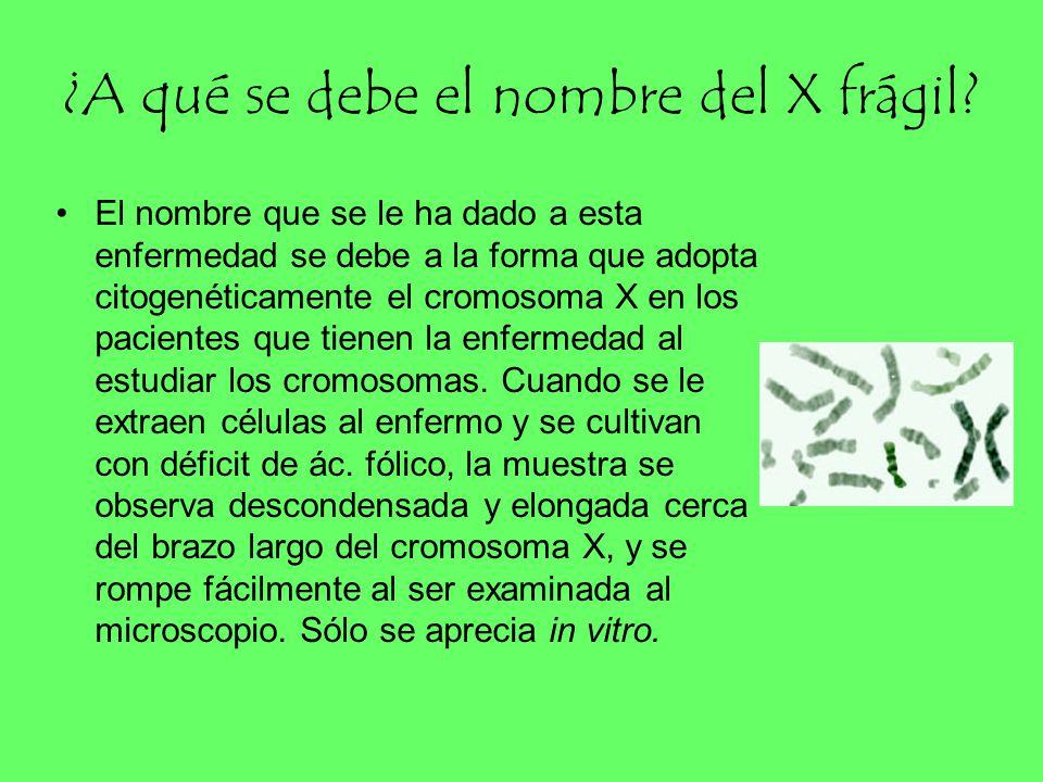 ¿A qué se debe el nombre del X frágil
