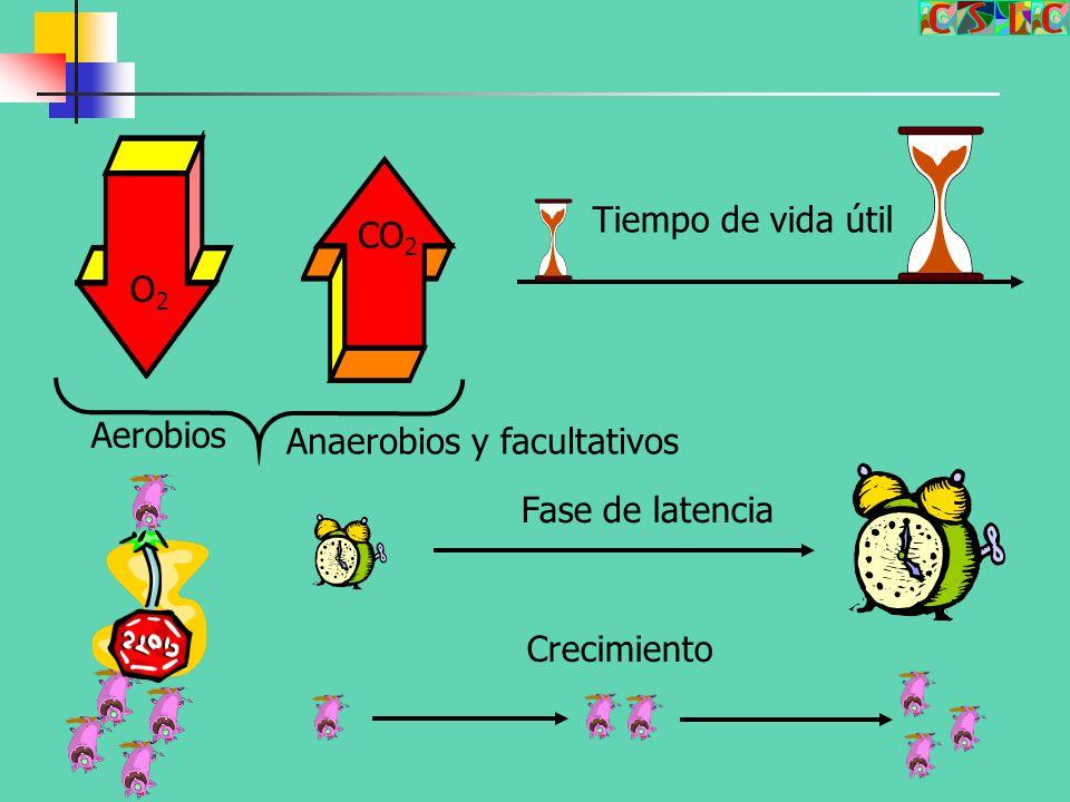 Tiempo de vida útil CO2 O2 Aerobios Anaerobios y facultativos Fase de latencia Crecimiento