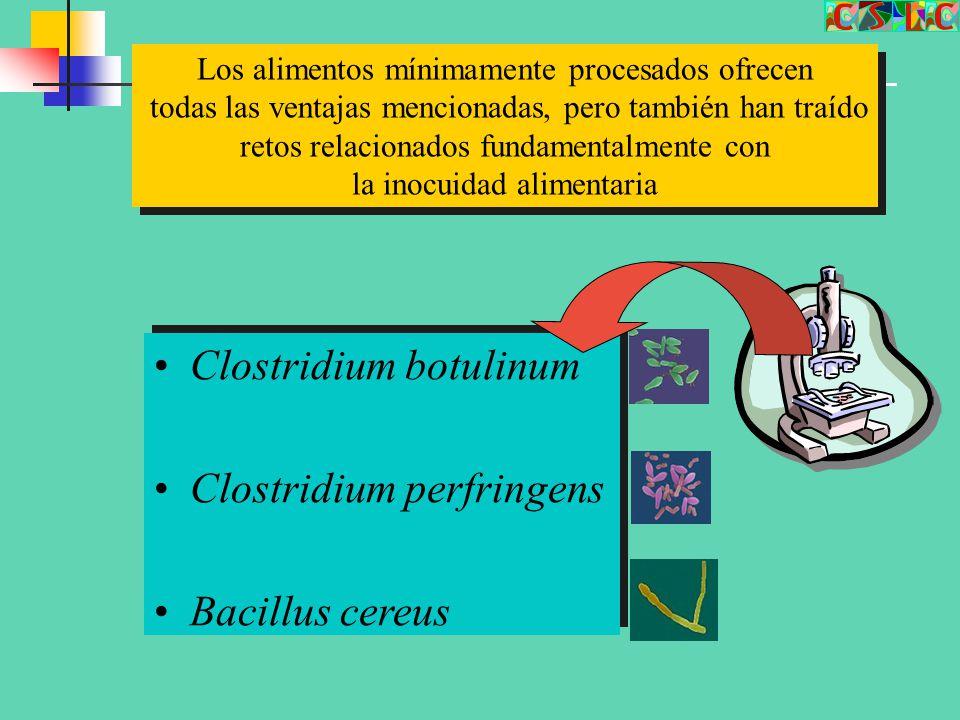 Clostridium botulinum Clostridium perfringens Bacillus cereus