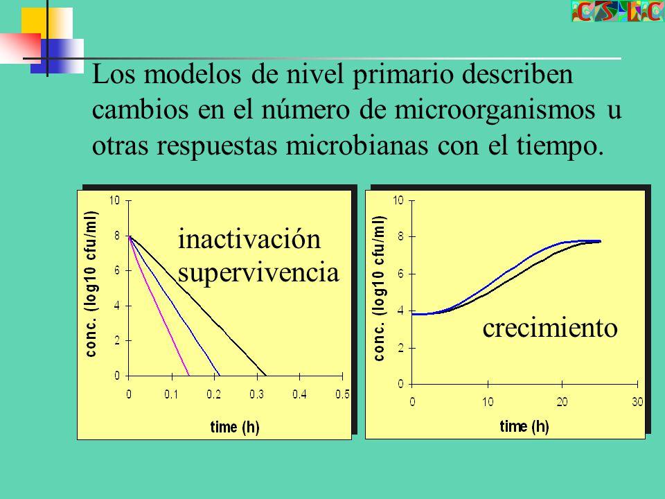 Los modelos de nivel primario describen