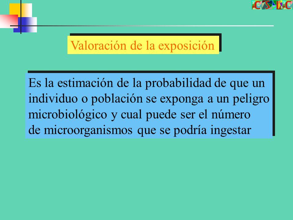 Valoración de la exposición