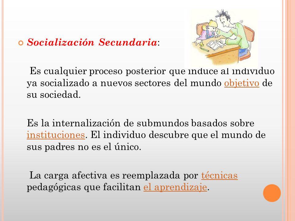 Socialización Secundaria: