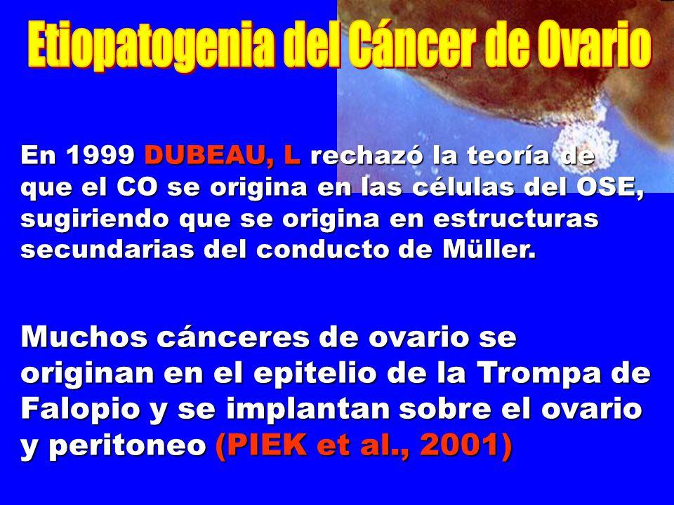 En 1999 DUBEAU, L rechazó la teoría de que el CO se origina en las células del OSE, sugiriendo que se origina en estructuras secundarias del conducto de Müller.