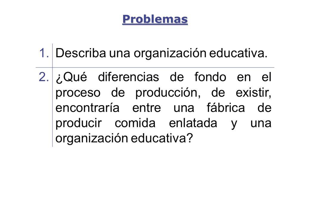 Describa una organización educativa. 2.