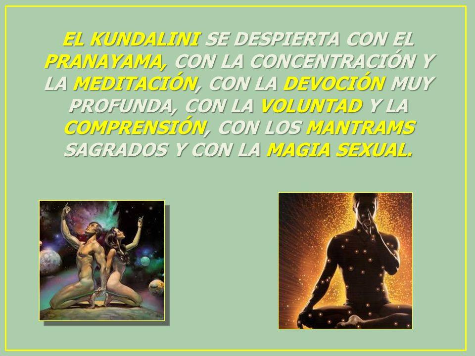 EL KUNDALINI SE DESPIERTA CON EL PRANAYAMA, CON LA CONCENTRACIÓN Y LA MEDITACIÓN, CON LA DEVOCIÓN MUY PROFUNDA, CON LA VOLUNTAD Y LA COMPRENSIÓN, CON LOS MANTRAMS SAGRADOS Y CON LA MAGIA SEXUAL.