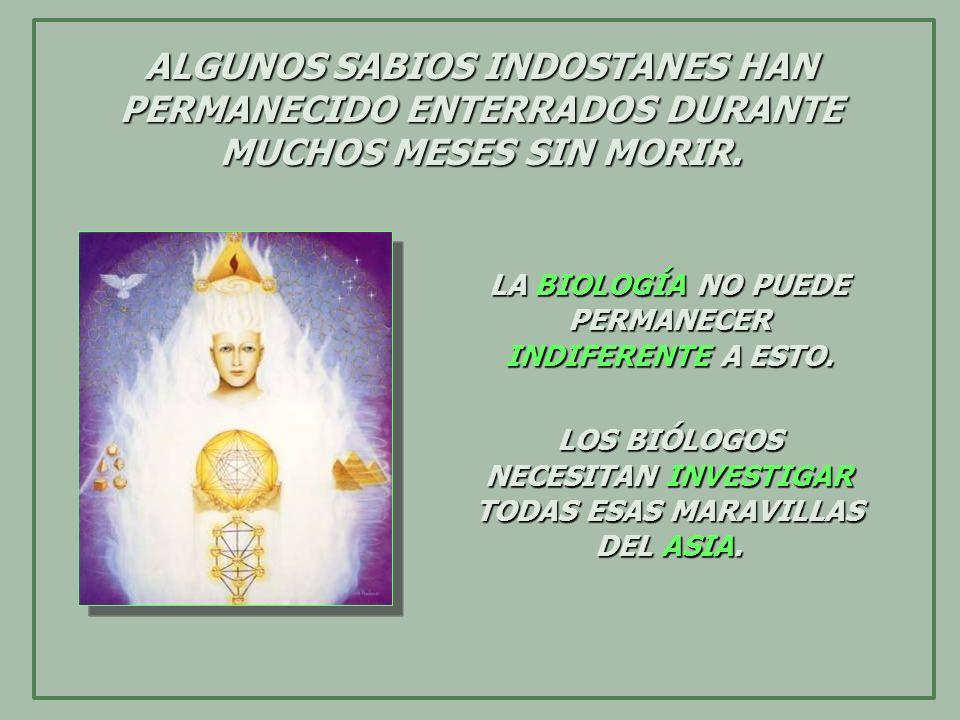 ALGUNOS SABIOS INDOSTANES HAN PERMANECIDO ENTERRADOS DURANTE MUCHOS MESES SIN MORIR.