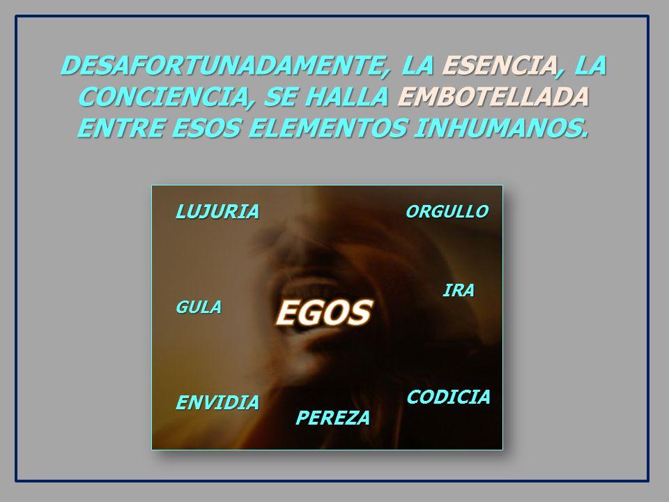 DESAFORTUNADAMENTE, LA ESENCIA, LA CONCIENCIA, SE HALLA EMBOTELLADA ENTRE ESOS ELEMENTOS INHUMANOS.