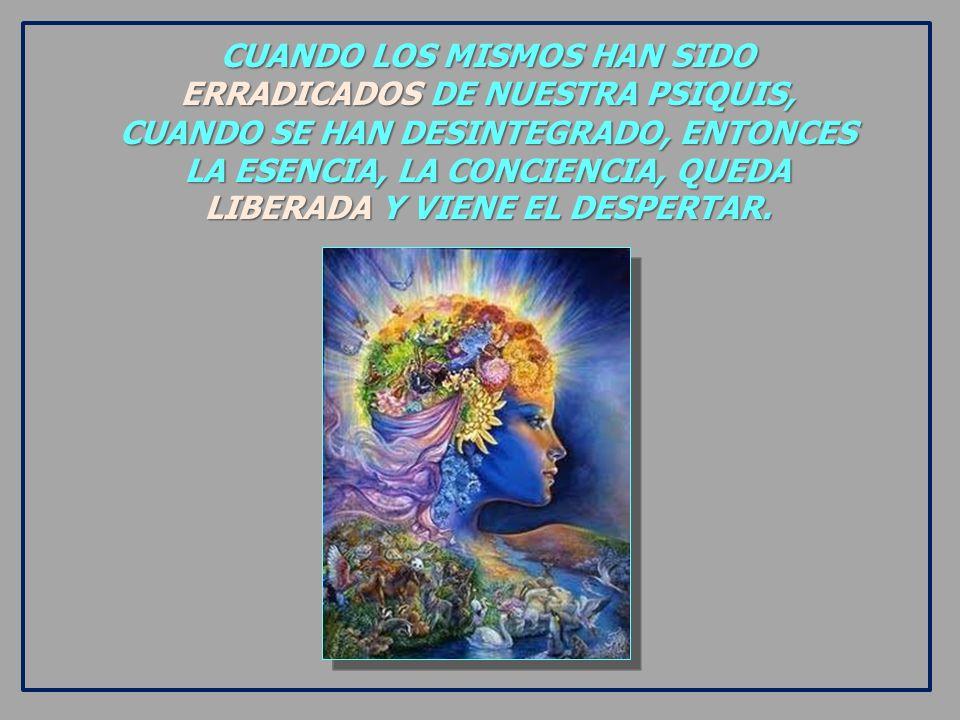 CUANDO LOS MISMOS HAN SIDO ERRADICADOS DE NUESTRA PSIQUIS, CUANDO SE HAN DESINTEGRADO, ENTONCES LA ESENCIA, LA CONCIENCIA, QUEDA LIBERADA Y VIENE EL DESPERTAR.