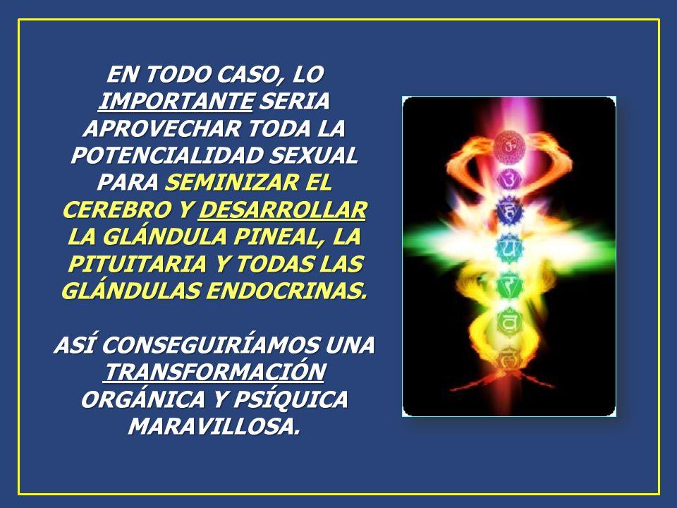 ASÍ CONSEGUIRÍAMOS UNA TRANSFORMACIÓN ORGÁNICA Y PSÍQUICA MARAVILLOSA.