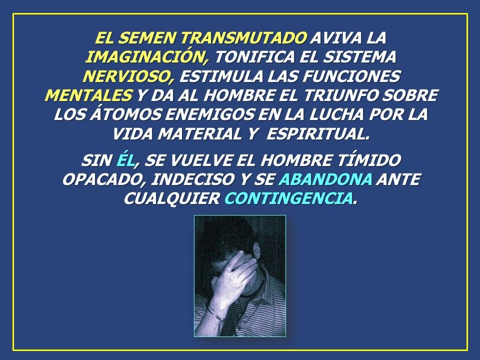 EL SEMEN TRANSMUTADO AVIVA LA IMAGINACIÓN, TONIFICA EL SISTEMA NERVIOSO, ESTIMULA LAS FUNCIONES MENTALES Y DA AL HOMBRE EL TRIUNFO SOBRE LOS ÁTOMOS ENEMIGOS EN LA LUCHA POR LA VIDA MATERIAL Y ESPIRITUAL.