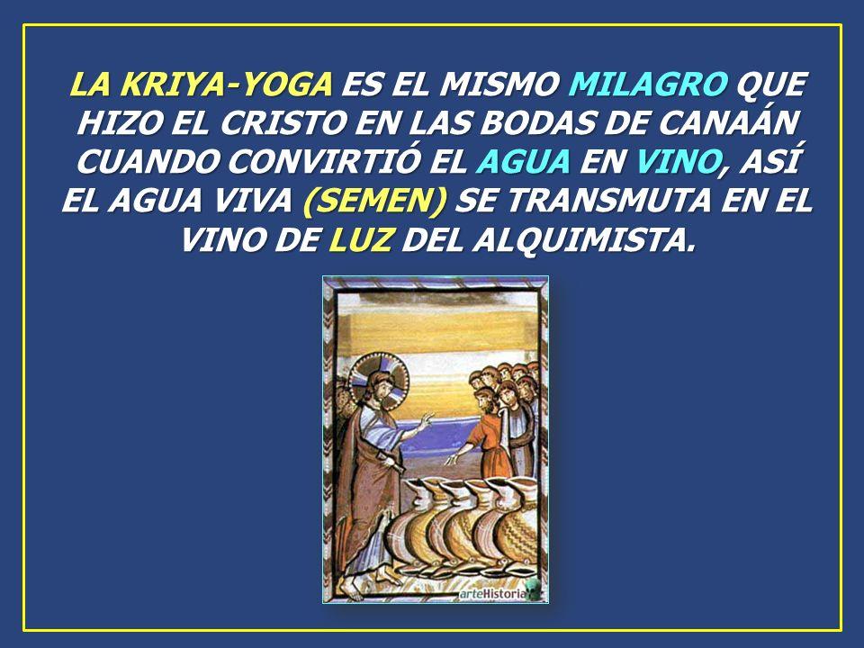 LA KRIYA-YOGA ES EL MISMO MILAGRO QUE HIZO EL CRISTO EN LAS BODAS DE CANAÁN CUANDO CONVIRTIÓ EL AGUA EN VINO, ASÍ EL AGUA VIVA (SEMEN) SE TRANSMUTA EN EL VINO DE LUZ DEL ALQUIMISTA.