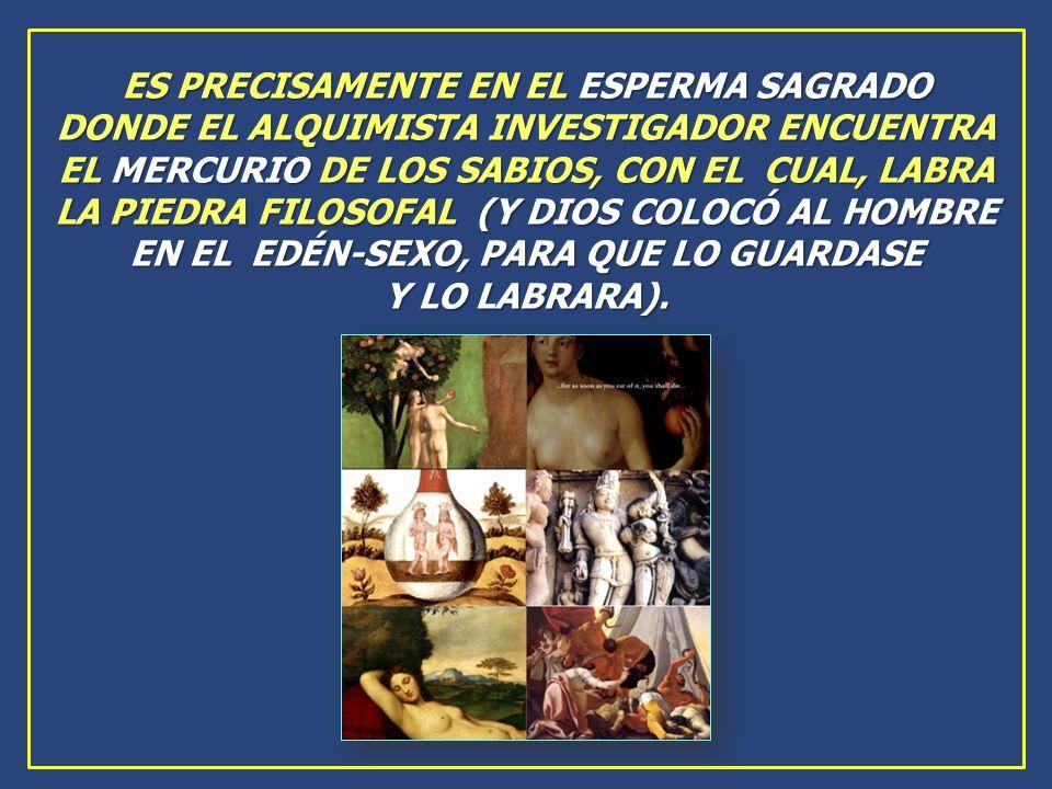 ES PRECISAMENTE EN EL ESPERMA SAGRADO DONDE EL ALQUIMISTA INVESTIGADOR ENCUENTRA EL MERCURIO DE LOS SABIOS, CON EL CUAL, LABRA LA PIEDRA FILOSOFAL (Y DIOS COLOCÓ AL HOMBRE EN EL EDÉN-SEXO, PARA QUE LO GUARDASE Y LO LABRARA).