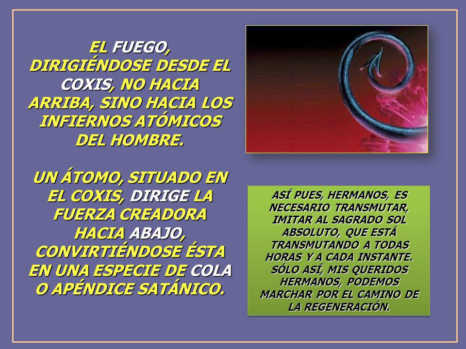 EL FUEGO, DIRIGIÉNDOSE DESDE EL COXIS, NO HACIA ARRIBA, SINO HACIA LOS INFIERNOS ATÓMICOS DEL HOMBRE.