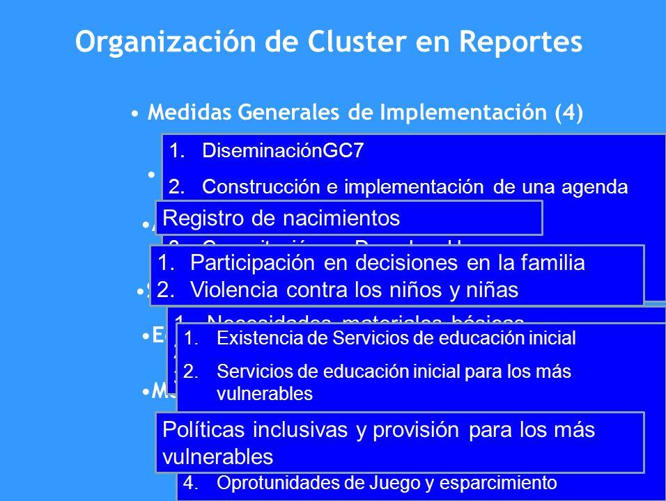 Organización de Cluster en Reportes