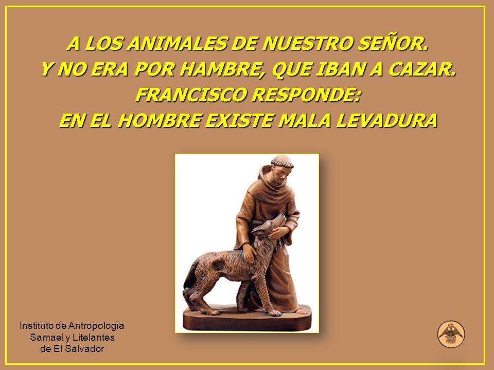 A LOS ANIMALES DE NUESTRO SEÑOR. EN EL HOMBRE EXISTE MALA LEVADURA