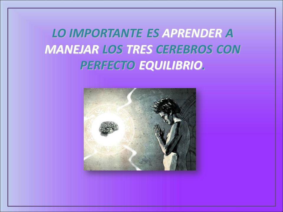 LO IMPORTANTE ES APRENDER A MANEJAR LOS TRES CEREBROS CON PERFECTO EQUILIBRIO.