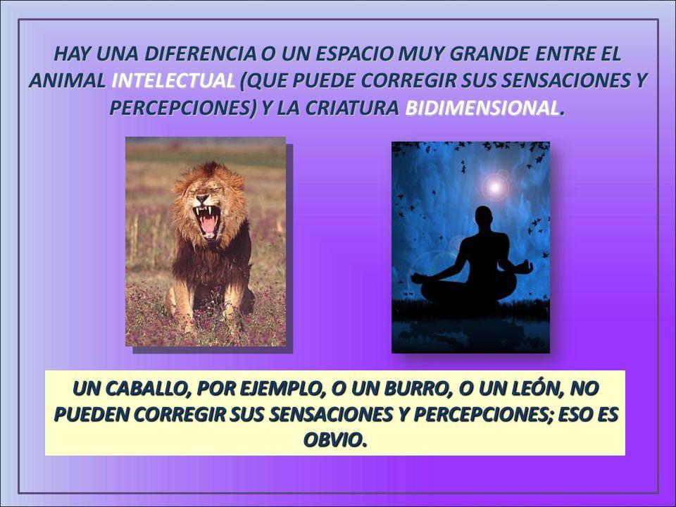 HAY UNA DIFERENCIA O UN ESPACIO MUY GRANDE ENTRE EL ANIMAL INTELECTUAL (QUE PUEDE CORREGIR SUS SENSACIONES Y PERCEPCIONES) Y LA CRIATURA BIDIMENSIONAL.