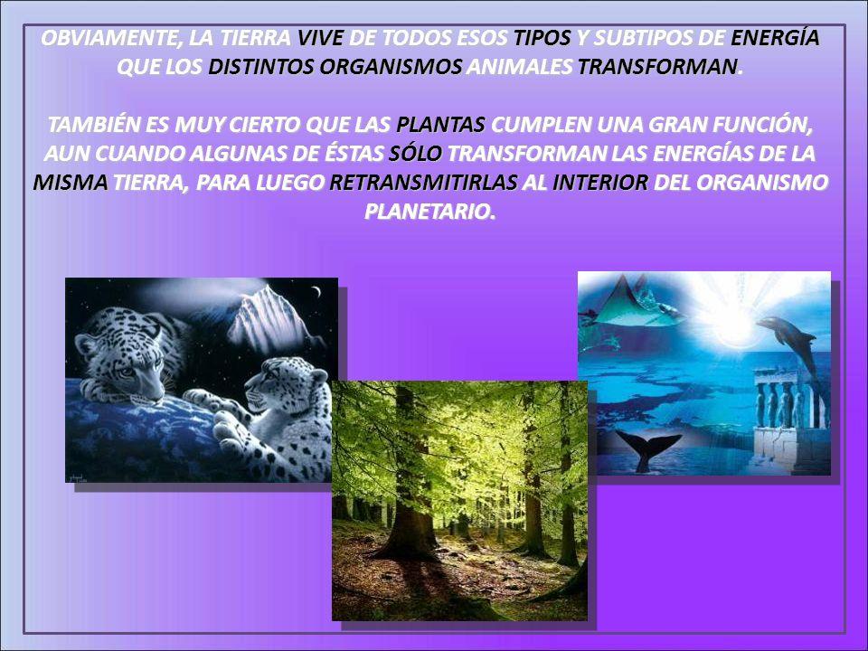 OBVIAMENTE, LA TIERRA VIVE DE TODOS ESOS TIPOS Y SUBTIPOS DE ENERGÍA QUE LOS DISTINTOS ORGANISMOS ANIMALES TRANSFORMAN.