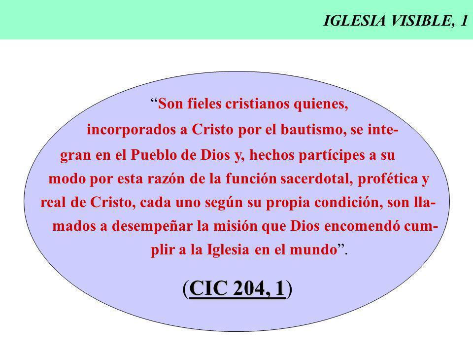 (CIC 204, 1) IGLESIA VISIBLE, 1 Son fieles cristianos quienes,