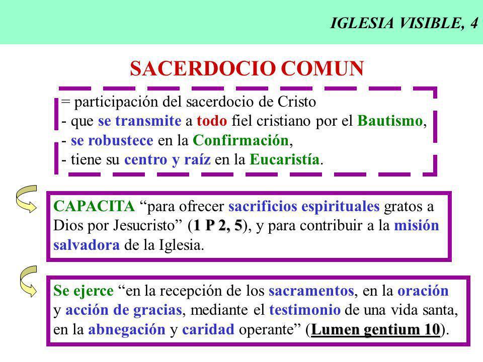 SACERDOCIO COMUN IGLESIA VISIBLE, 4