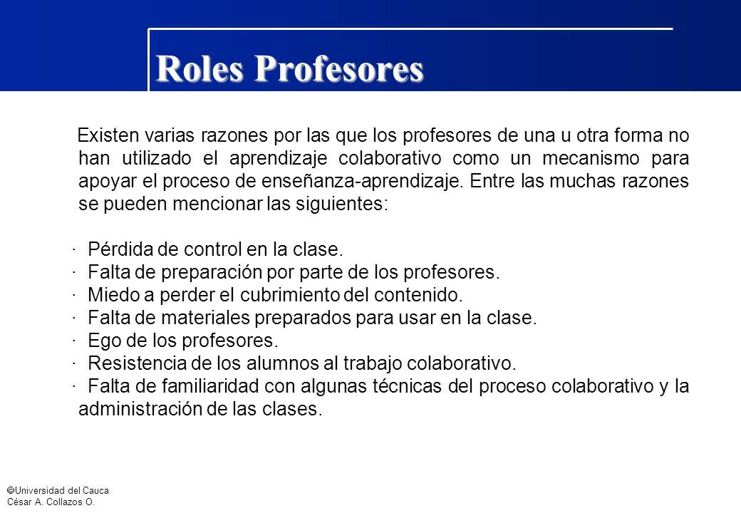 Roles Profesores