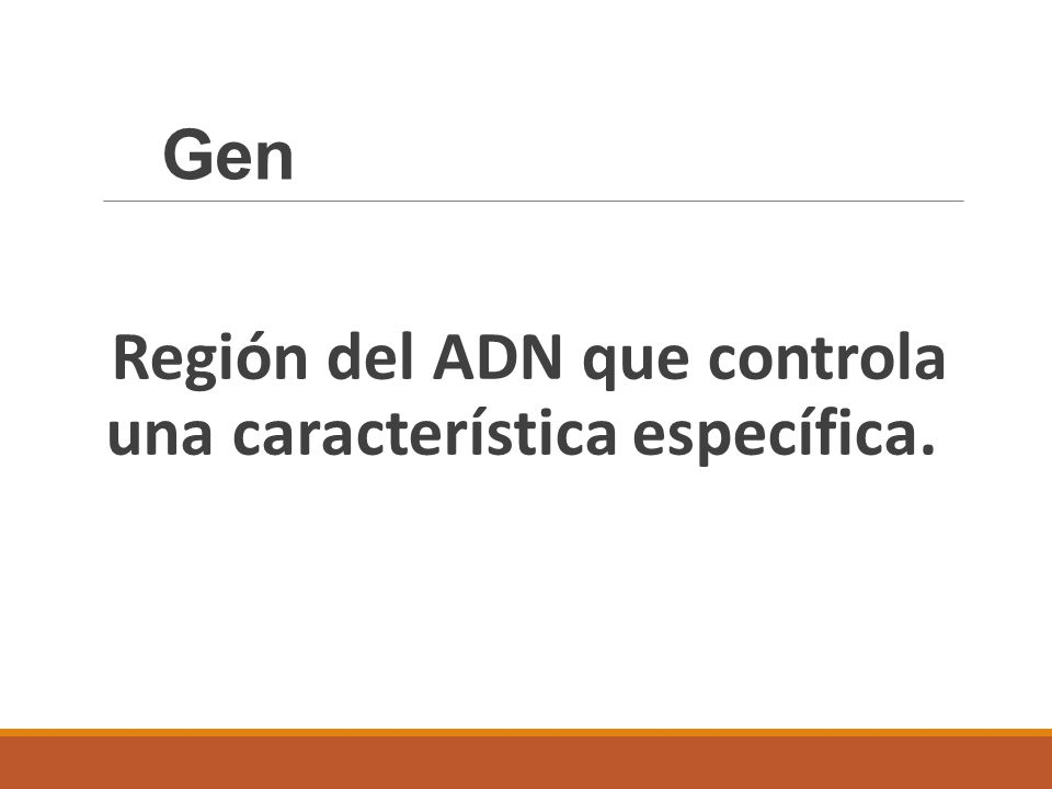 Gen Región del ADN que controla una característica específica.