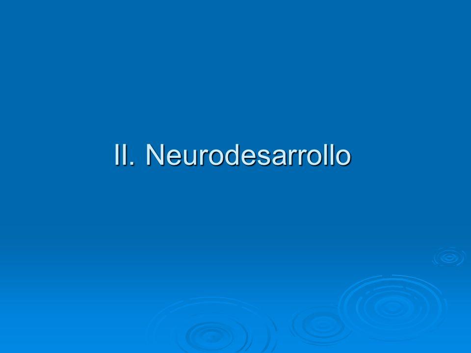 II. Neurodesarrollo