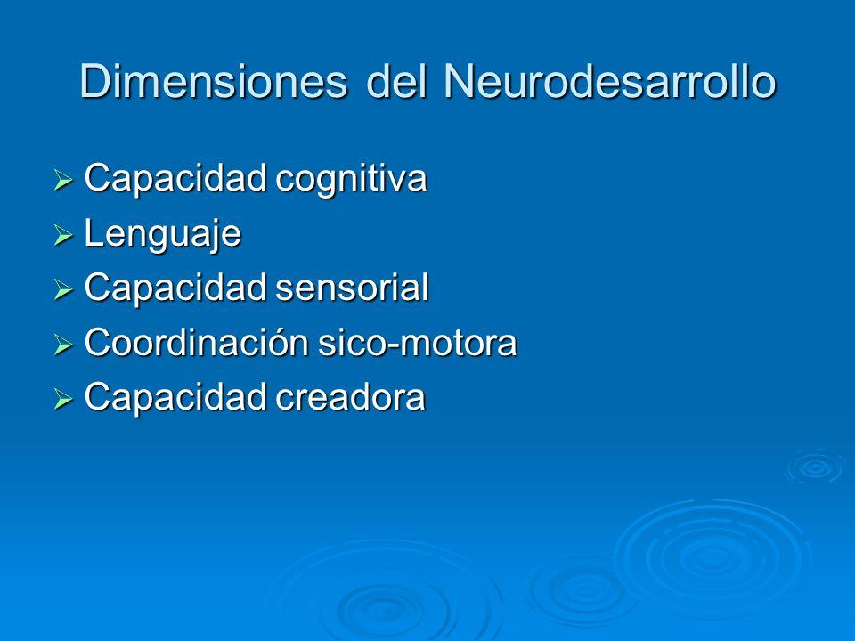 Dimensiones del Neurodesarrollo