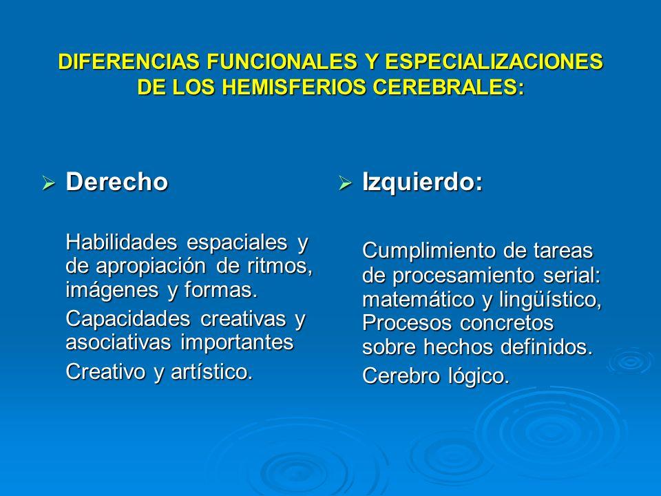 DIFERENCIAS FUNCIONALES Y ESPECIALIZACIONES DE LOS HEMISFERIOS CEREBRALES: