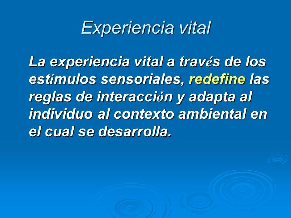 Experiencia vital