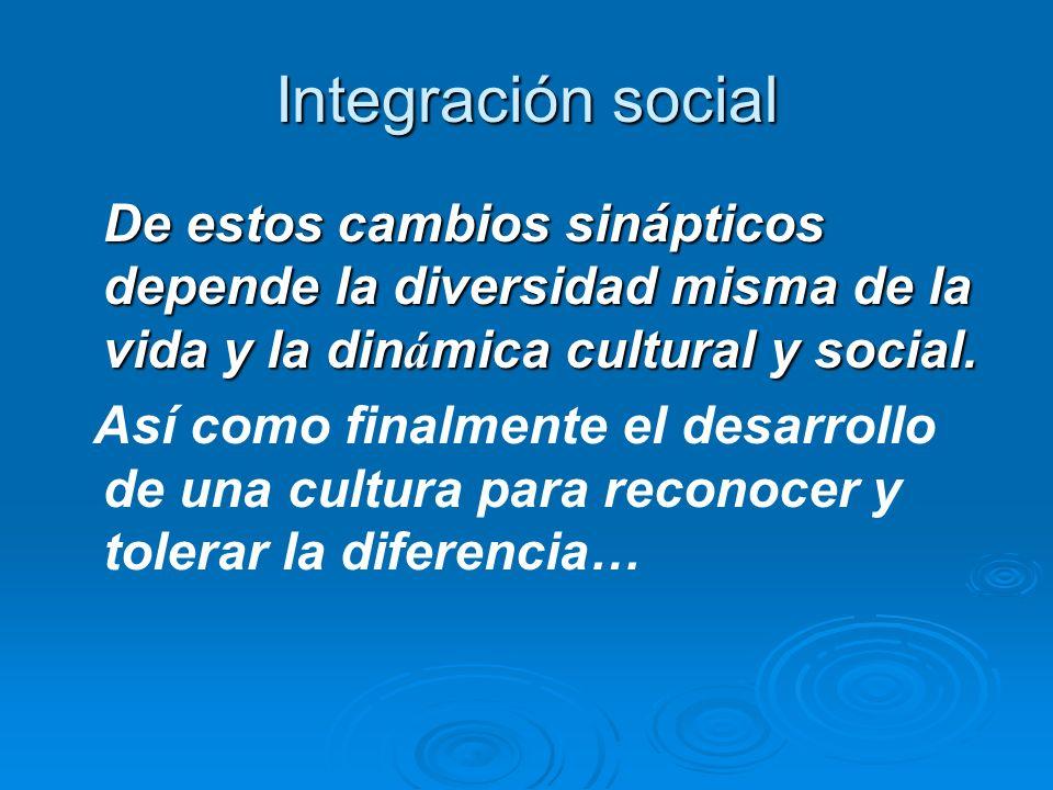Integración socialDe estos cambios sinápticos depende la diversidad misma de la vida y la dinámica cultural y social.