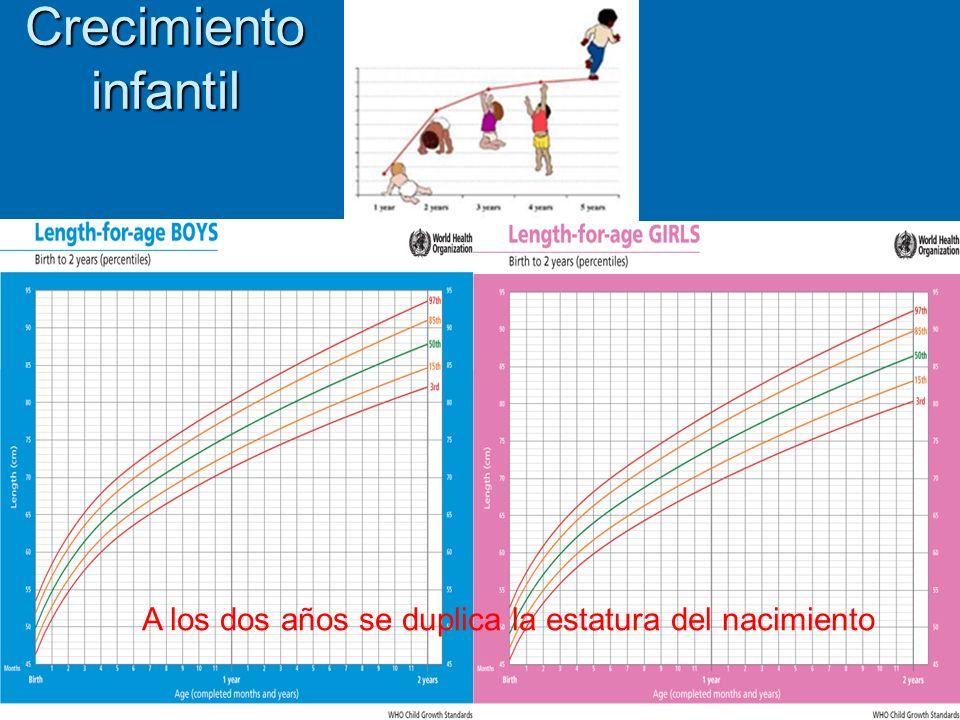 Crecimiento infantil A los dos años se duplica la estatura del nacimiento