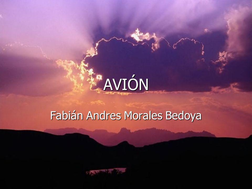 Fabián Andres Morales Bedoya