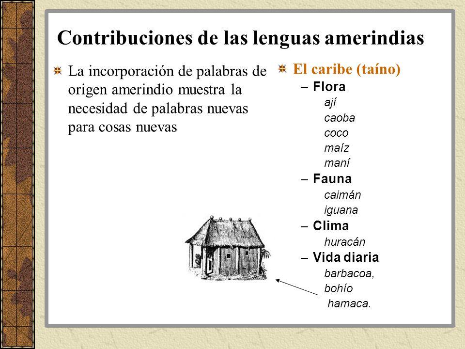 Contribuciones de las lenguas amerindias