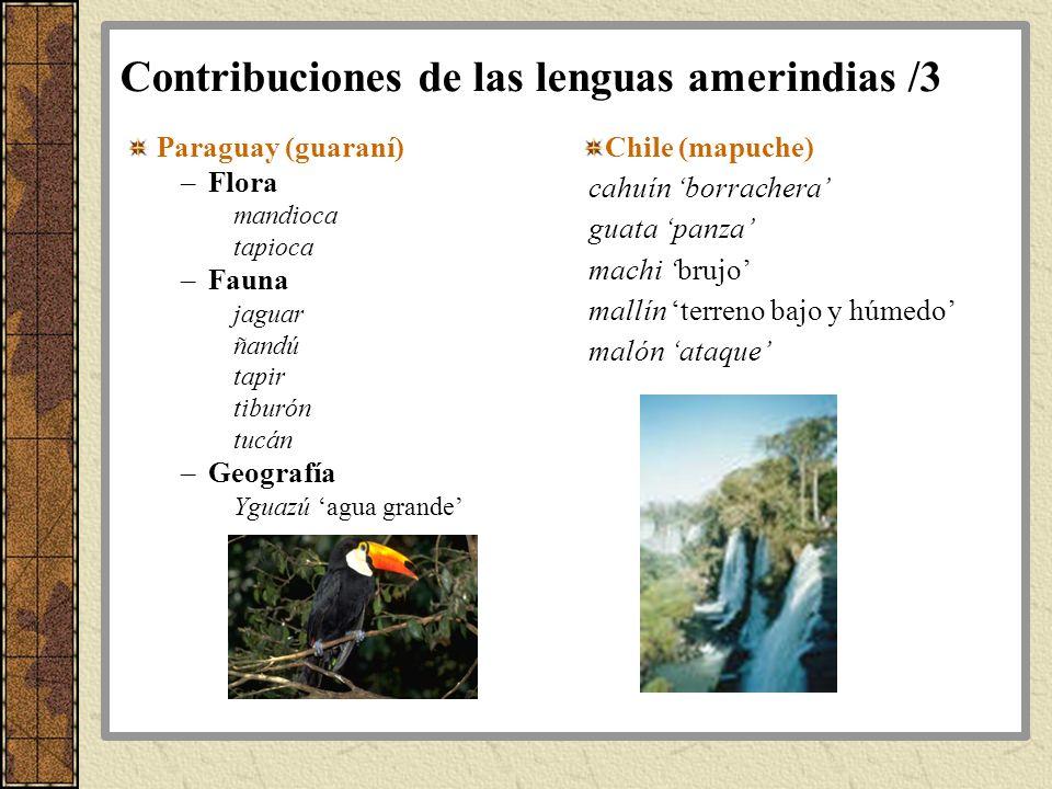 Contribuciones de las lenguas amerindias /3