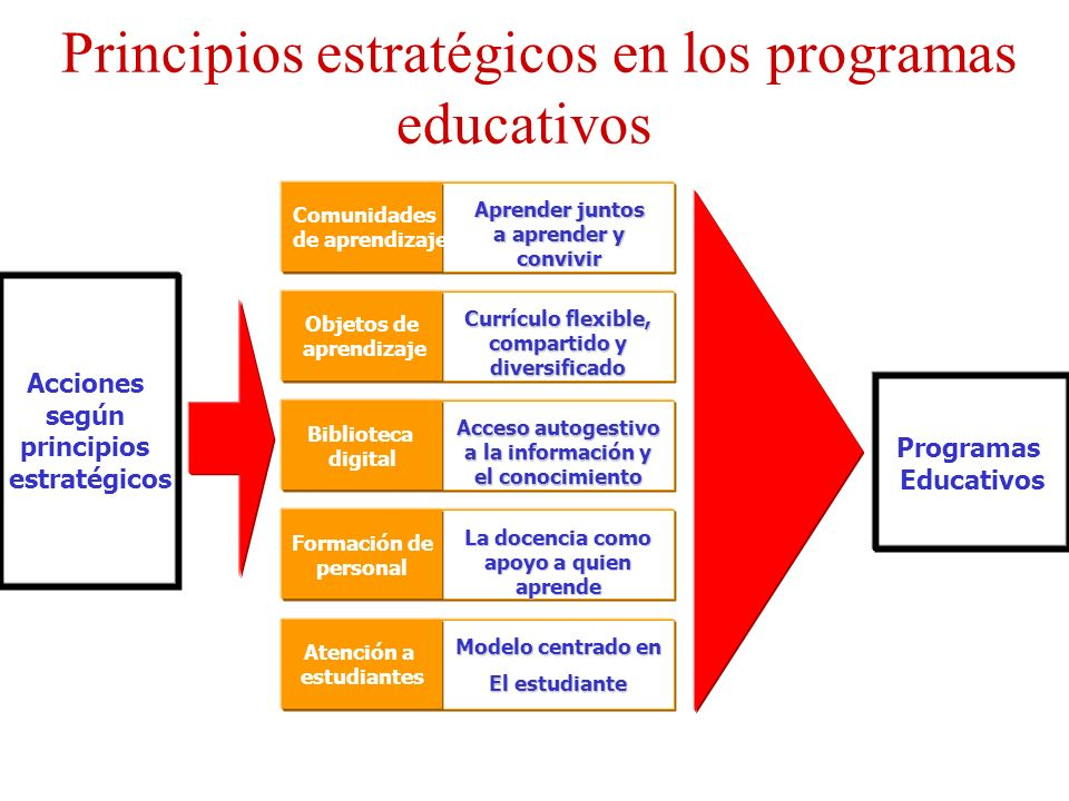 Principios estratégicos en los programas educativos
