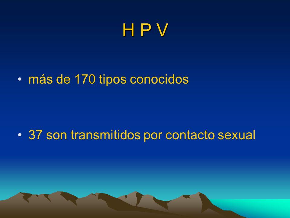 H P V más de 170 tipos conocidos