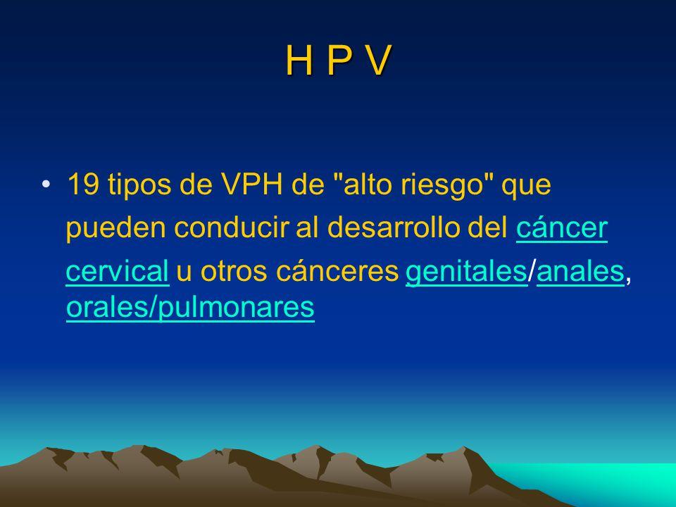 H P V 19 tipos de VPH de alto riesgo que