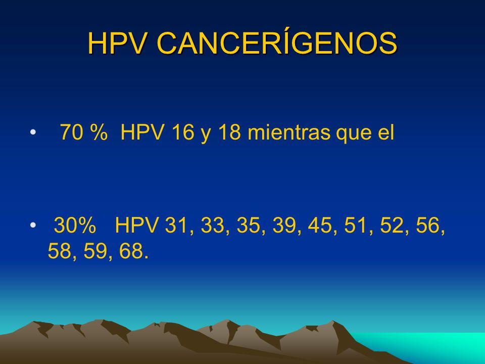 HPV CANCERÍGENOS 70 % HPV 16 y 18 mientras que el