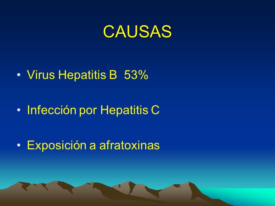 CAUSAS Virus Hepatitis B 53% Infección por Hepatitis C