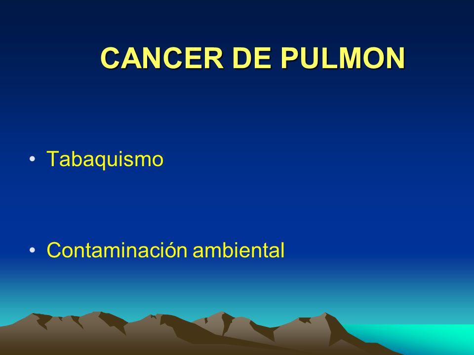 CANCER DE PULMON Tabaquismo Contaminación ambiental
