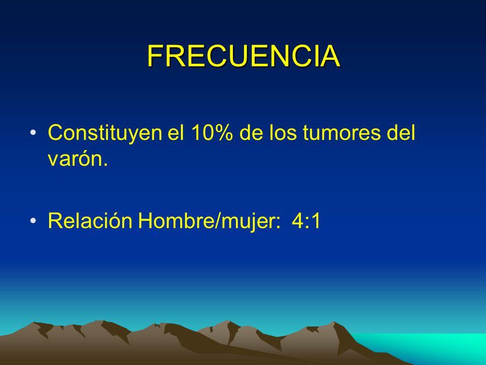 FRECUENCIA Constituyen el 10% de los tumores del varón.