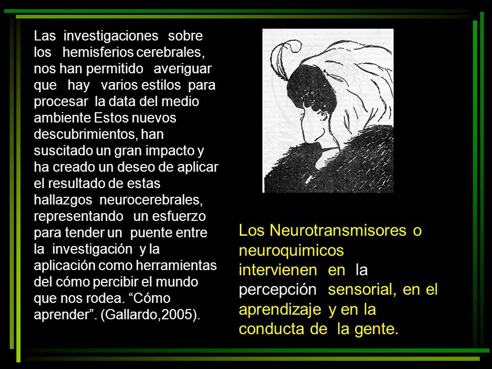 Los Neurotransmisores o neuroquimicos