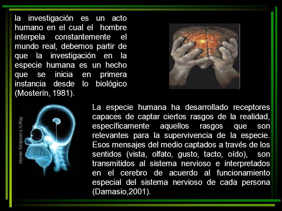 la investigación es un acto humano en el cual el hombre interpela constantemente el mundo real, debemos partir de que la investigación en la especie humana es un hecho que se inicia en primera instancia desde lo biológico (Mosterín, 1981).
